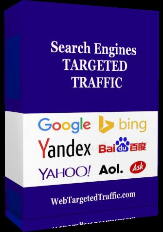 search engine google traffic