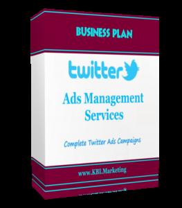 Twitter Ads Management Services, Twitter Ads, Twitter ad management, Twitter Ad, SMM, Twitter Advertising Service
