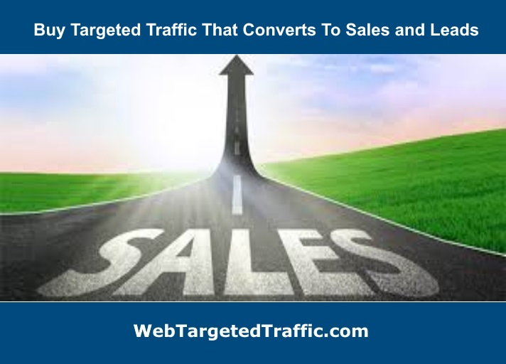 The Money Is In The List: Buy Targeted Traffic That converts To Sales
