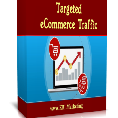 targeted ecommerce traffic