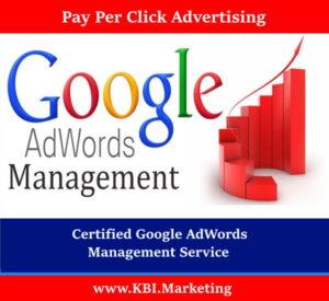 Google Ad campaign - Pay Per Click Google Adwords Management Services