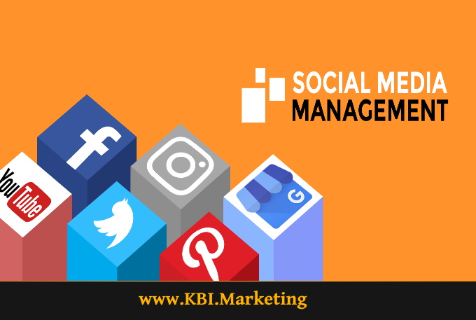social media management services